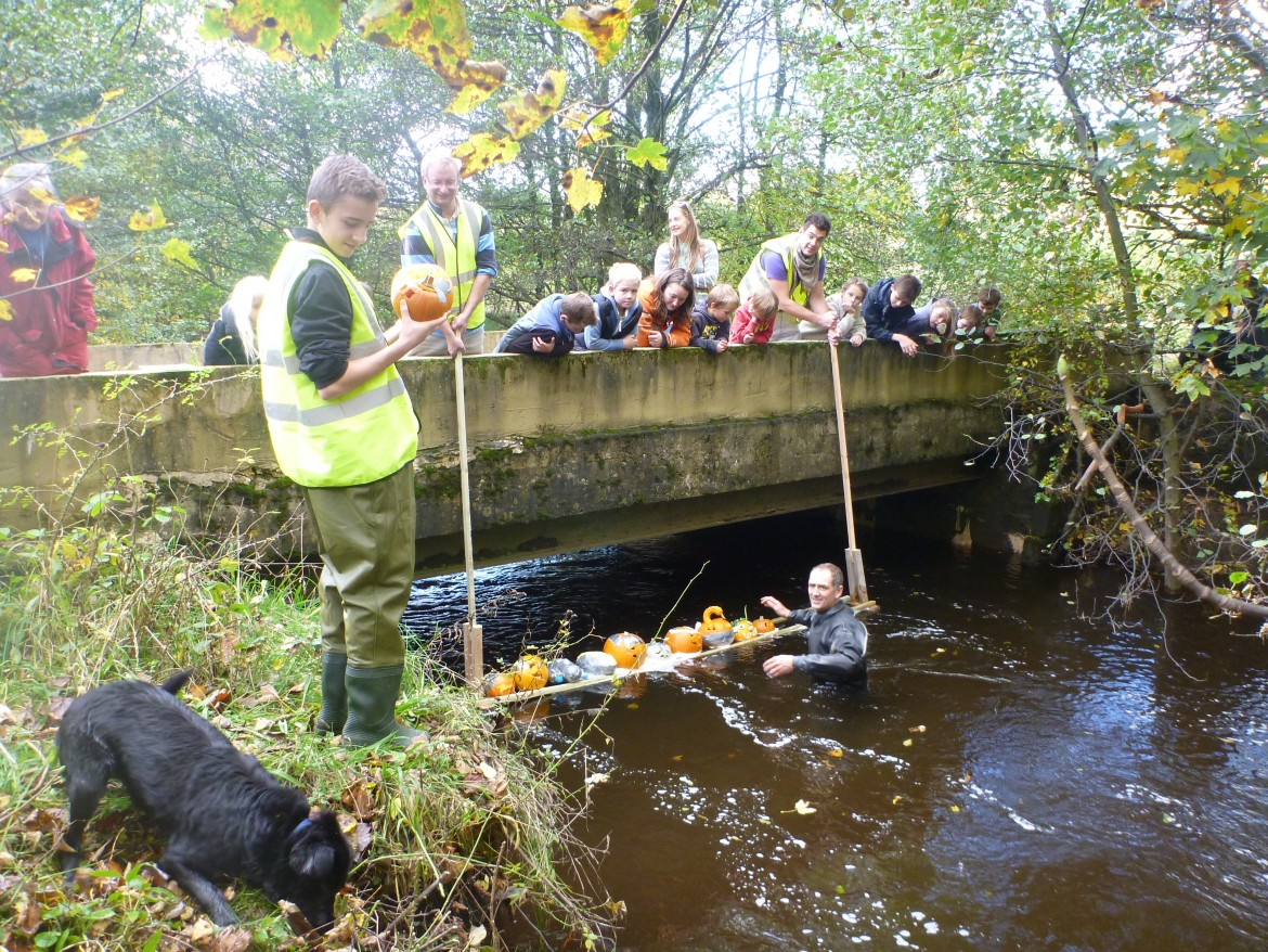 Harehope Quarry Halloween event 2014