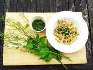 Garlic-mustard-pesto